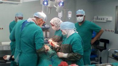Photo of وزيرة الصحة: مبادرة الرئيس لـ«قوائم الانتظار» أجرت أكثر من 300 ألف عملية جراحية عاجلة