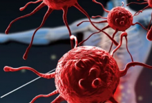 Photo of بعد انتشار فيروس كورونا.. 10 أطعمة ومشروبات طبيعية لتقوية جهاز المناعة