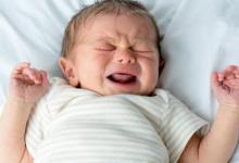 Photo of لعلاج المغص عند الأطفال.. عشبة مضمونة تعطى نتائج سريعة