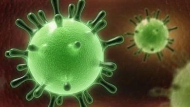 Photo of كارثة جديدة .. فيروس كورونا يهاجم القلب