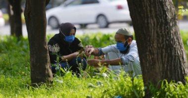 Photo of 52013 اصابة بفيروس كورونا في باكستان