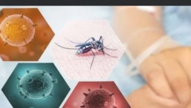 Photo of أعراض حمى الضنك وطريقة العدوى