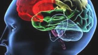 Photo of تعرف على طرق علاج السكتة الدماغية